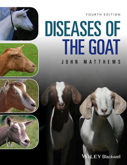 Обложка «Diseases of The Goat»