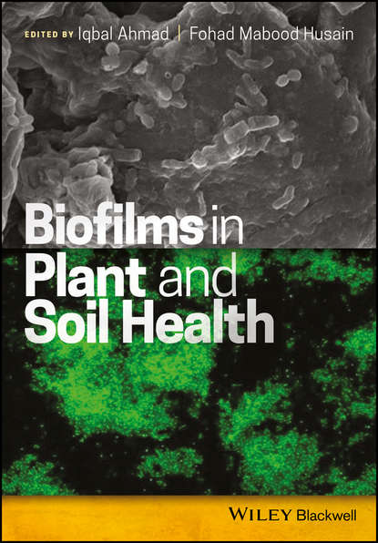 Обложка «Biofilms in Plant and Soil Health»