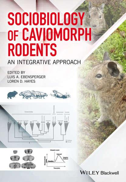 Обложка «Sociobiology of Caviomorph Rodents. An Integrative Approach»