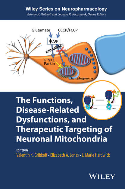 Обложка «The Functions, Disease-Related Dysfunctions, and Therapeutic Targeting of Neuronal Mitochondria»