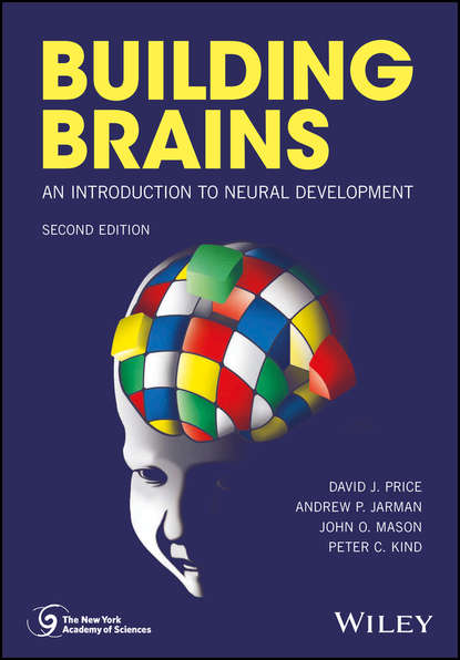 Обложка «Building Brains. An Introduction to Neural Development»