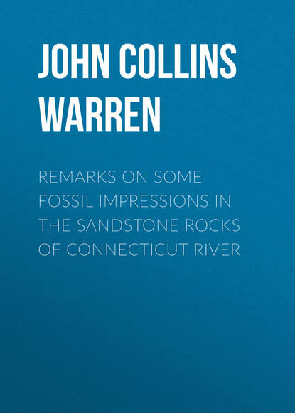 Обложка «Remarks on some fossil impressions in the sandstone rocks of Connecticut River»