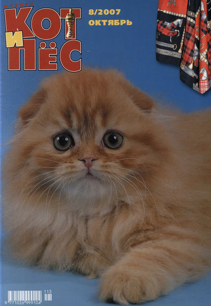 Обложка «Кот и Пёс №8/2007»