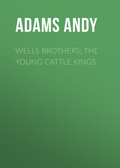 Обложка «Wells Brothers: The Young Cattle Kings»