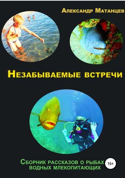 Обложка «Незабываемые встречи. Сборник рассказов о рыбах и водных млекопитающих»