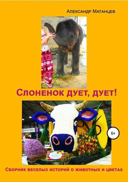 Обложка «Слоненок дует, дует!»