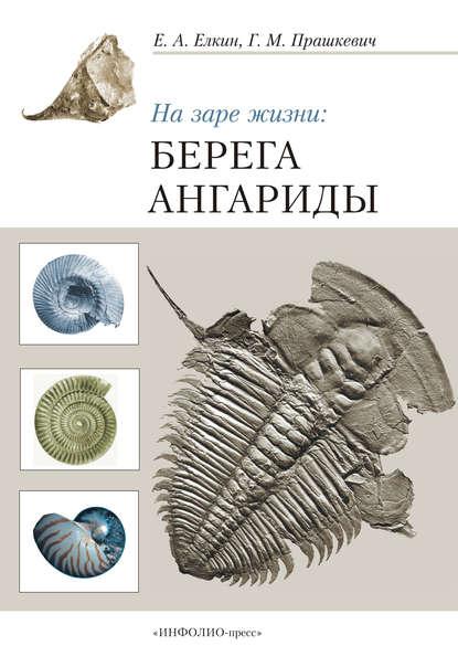 Обложка «На заре жизни: берега Ангариды»