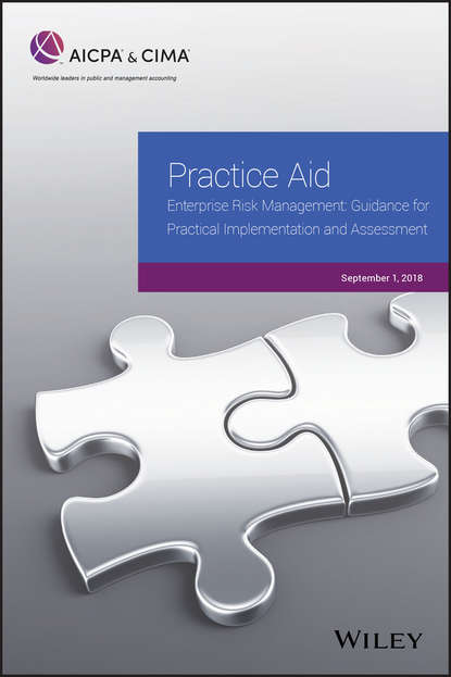 Обложка «Practice Aid: Enterprise Risk Management: Guidance For Practical Implementation and Assessment, 2018»