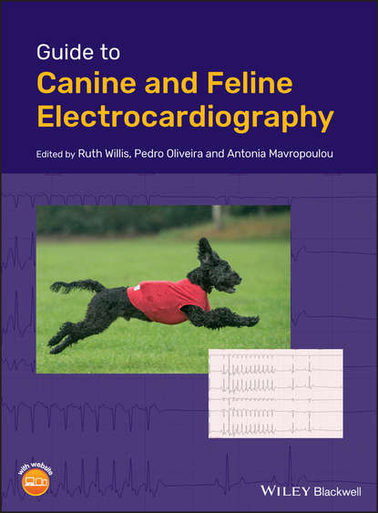 Обложка «Guide to Canine and Feline Electrocardiography»
