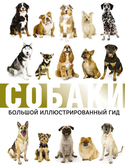 Обложка «Собаки. Большой иллюстрированный гид»