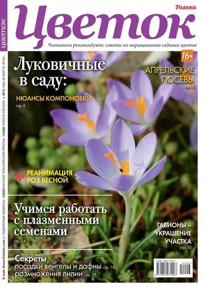 Обложка «Цветок 06-2019»
