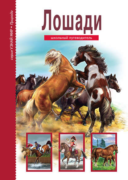 Обложка «Лошади»