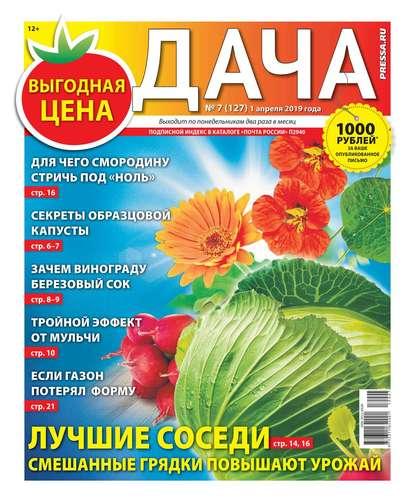 Обложка «Дача Pressa.ru 07-2019»