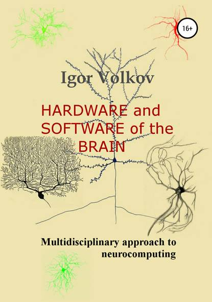 Обложка «Hardware and software of the brain»