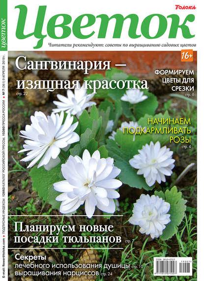 Обложка «Цветок 07-2019»