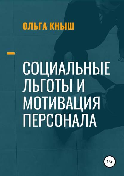 Обложка «Социальные льготы и мотивация персонала»