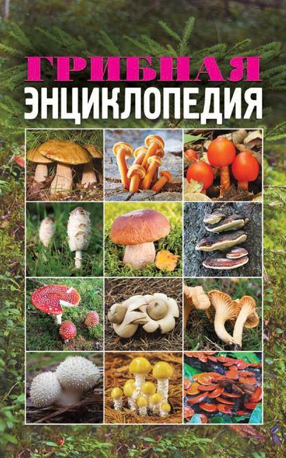 Обложка «Грибная энциклопедия»