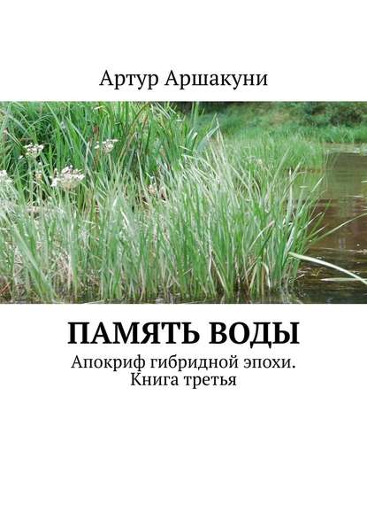 Обложка «Памятьводы. Апокриф гибридной эпохи. Книга третья»