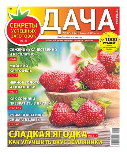 Обложка «Дача Pressa.ru 12-2019»
