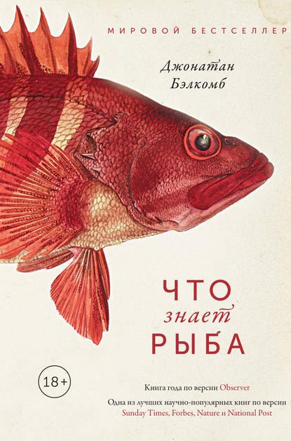 Обложка «Что знает рыба»