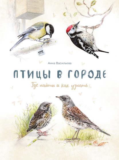 Обложка «Птицы в городе»