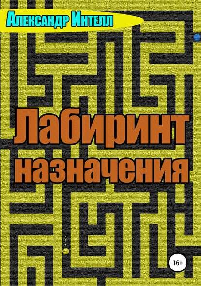 Обложка «Лабиринт назначения»
